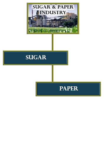 sugar-organigram-mobile.png